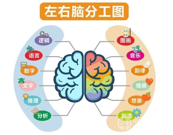 哲思憶啟學全腦開發