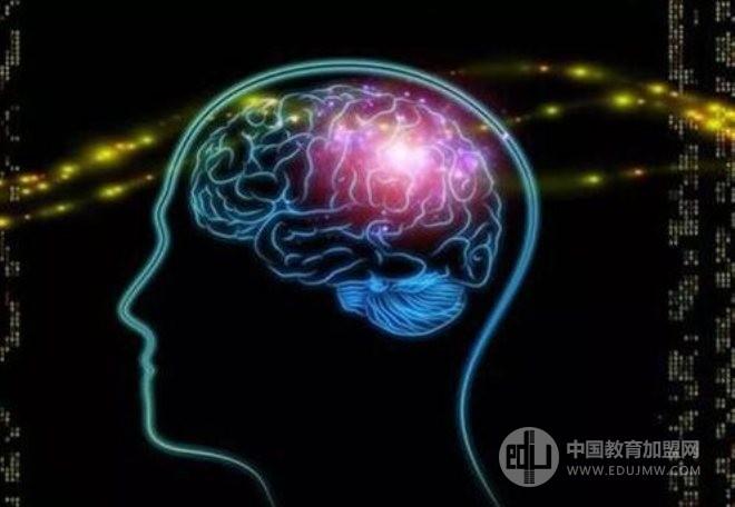 卓愛全腦開發