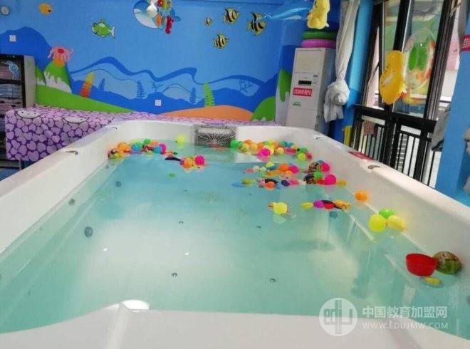 跳跳海豚婴幼儿游泳