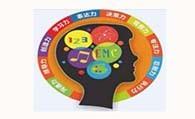 新智慧全脑教育